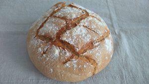 sourdough bread trend